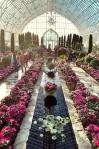 Conservatory2_2